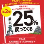 岡山市のPayPay25%還元キャンペーン対象店舗一覧【コンビニ・百貨店・ドラッグストア編】(あいうえお順)②