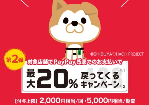 渋谷区PayPay20%還元キャンペーンの期間はいつからいつまで?対象店舗はどこ?