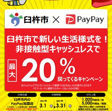 臼杵市PayPay20%還元キャンペーンはいつからいつまで?対象店舗も調査!
