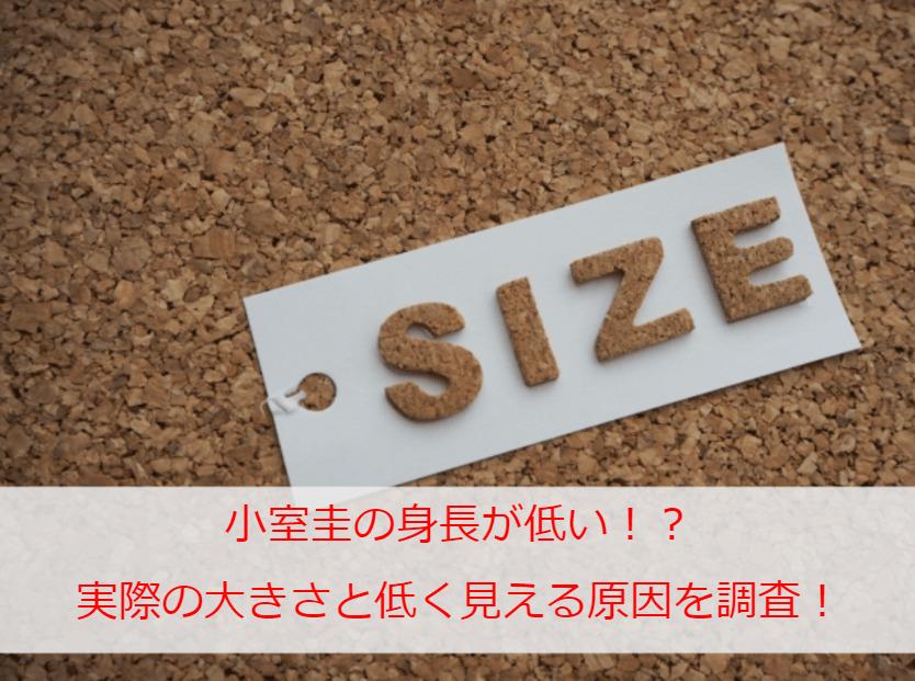 小室圭の身長が低い!?実際の大きさと低く見える原因を調査!